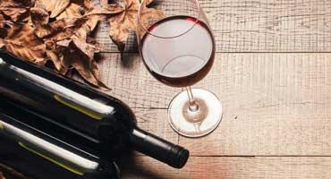 Líderes del sector vitivinícola
